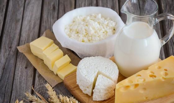 formaggio JulijaDmitrijeva shutterstock