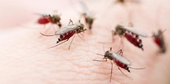Viaggi e infezioni