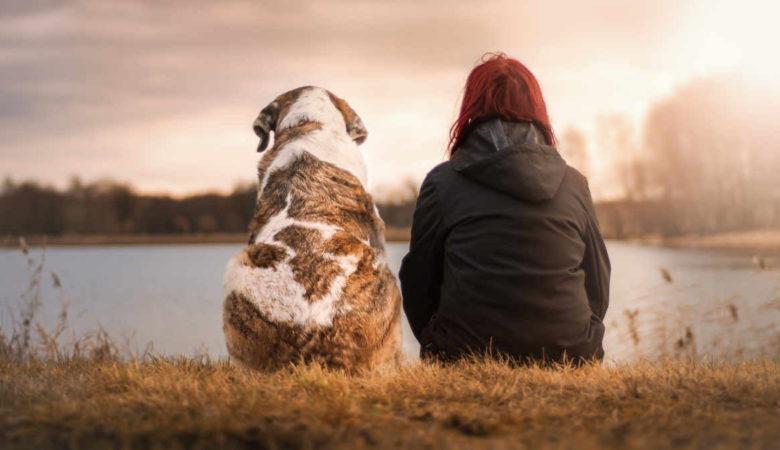 Un cane allunga la vita